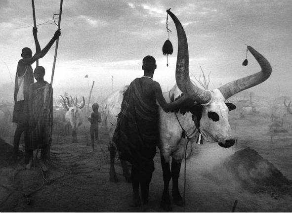 A cattle camp in southern Sudan in 2006.