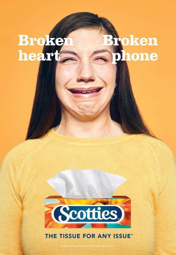 scotties1